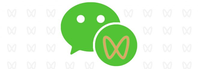 wechat_channels
